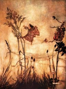 Fairy and spiderweb