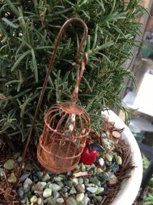 Fairies of The Rosemary Garden - bird cage and apple