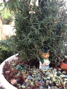 Fairies of The Rosemary Garden - Dormouse