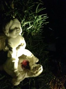 Fairies of The Rosemary Garden - Little Fairy with Lady Bug