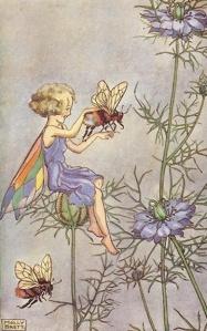 Fairy and Bee - Molly Brett